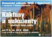 Výstava kaktusov Košice
